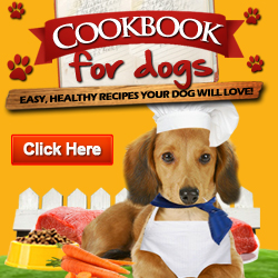 Cookbook for dogs forumfinder Gallery